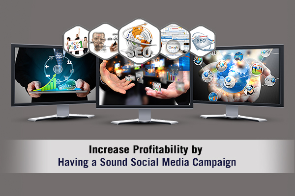 Increase Profitability by Having a Sound Social Media Campaign